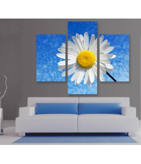 Multi-canvas 3x Daisy