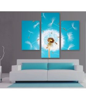 Multi-canvas 3x Dandelion seeds