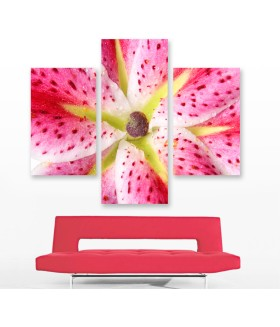 Multi-canvas 3x Pink lily