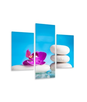 Multi-canvas 3x Pink orchid zen