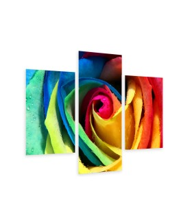 Multi-canvas 3x Rose rainbow