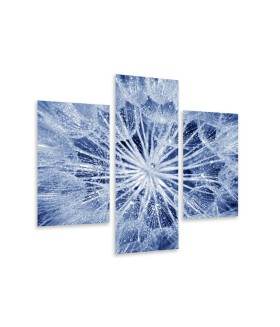 Multi-canvas 3x Soft dandelion flower