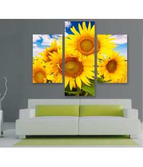 Multi-canvas 3x Sun flower
