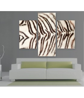 Multi-canvas 3x White Tiger