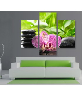 Multi-canvas 3x Zen orchid spa