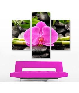 Multi-canvas 3x Zen spa orchid