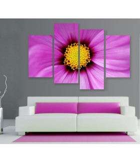 Multi-canvas 4x Flower close-up