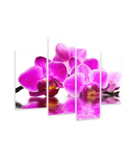 Multi-canvas 4x Pink orchid