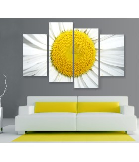 Multi-canvas 4x White flower